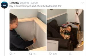 dog house project tweet