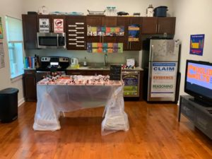 kitchen turned chemistry lab