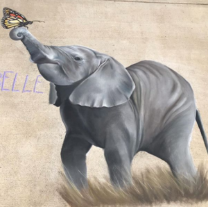 elephant and butterfly