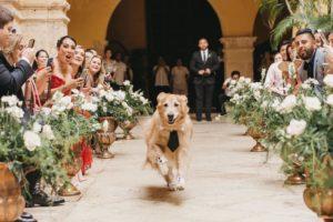 thor runs down wedding aisle
