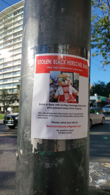 lost bear