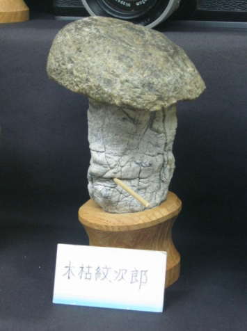 rock with face