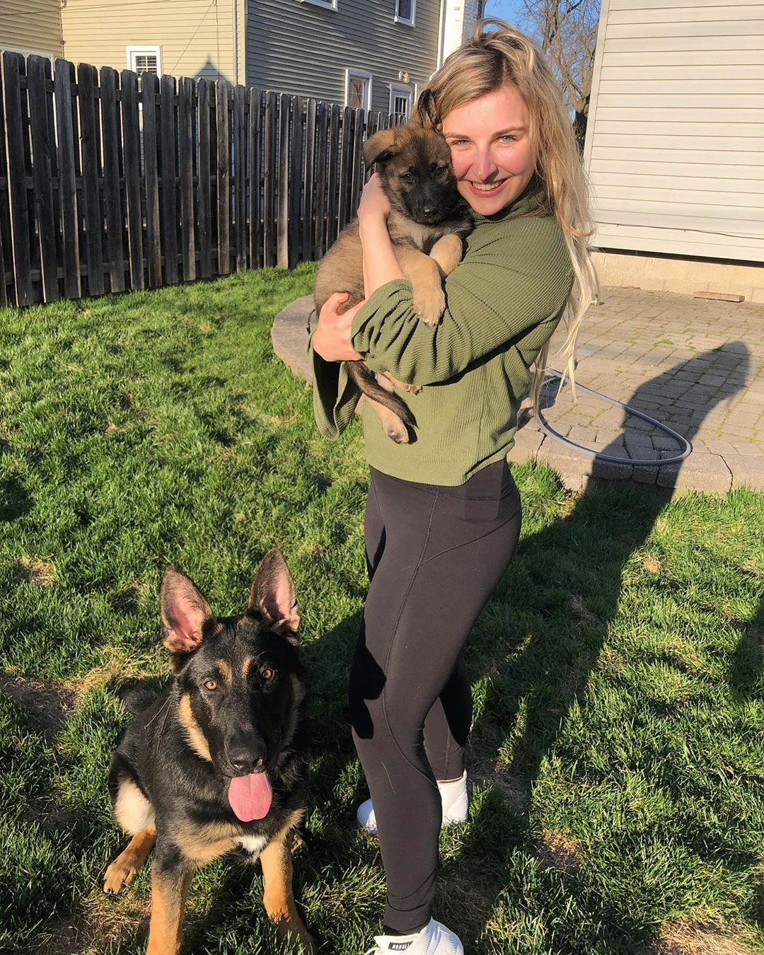 kate and dogs