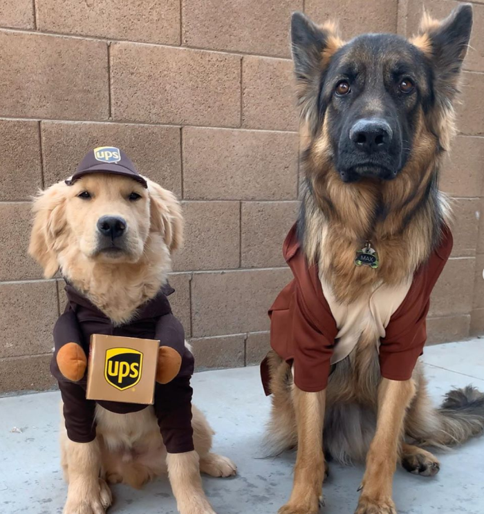 Max and Murphy