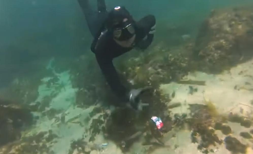 bryan dives for trash