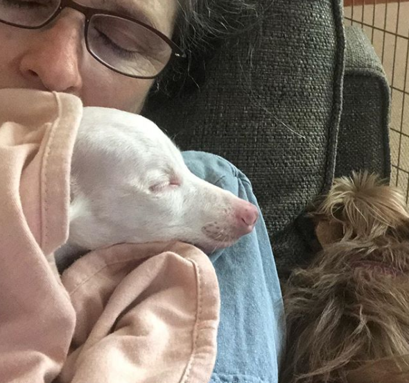 melissa and piglet