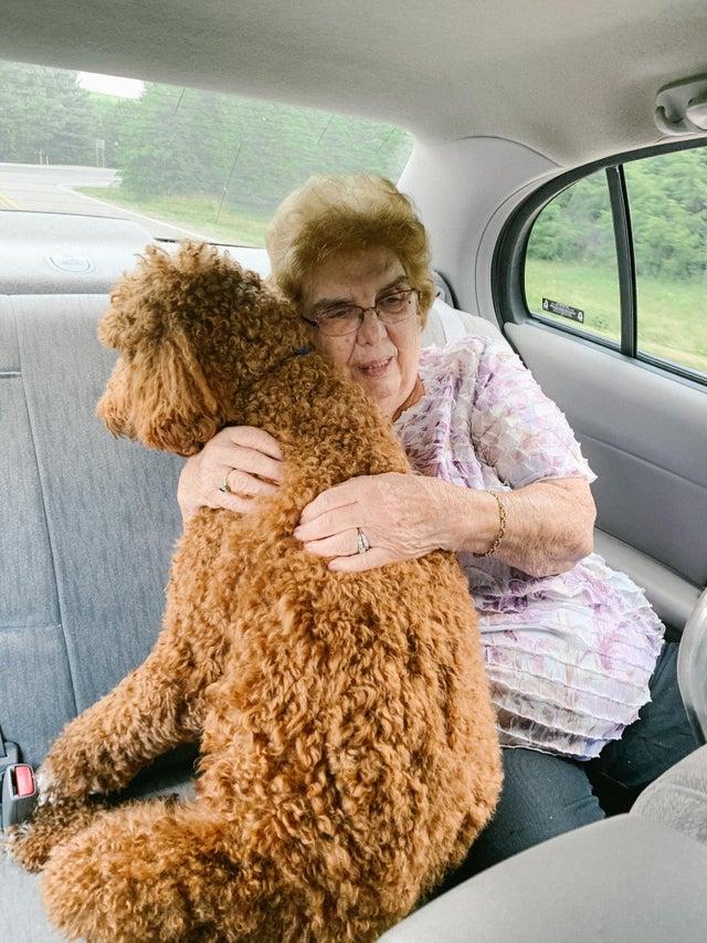 grandma hugs dog