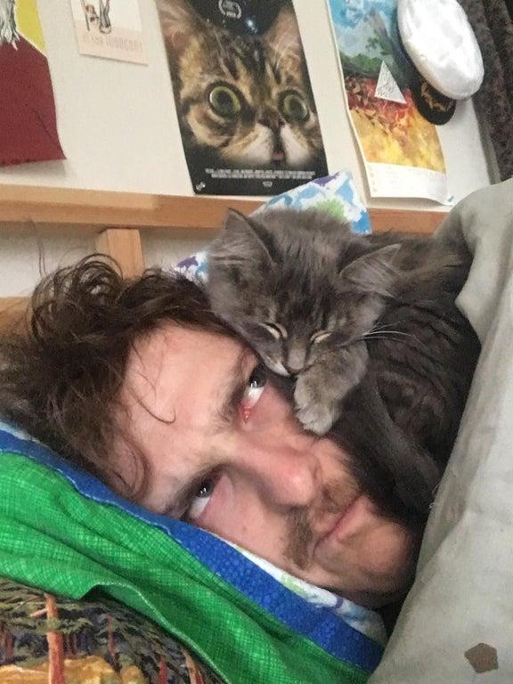 kitten on man's head