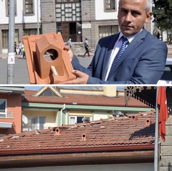 roof tile bird shelters