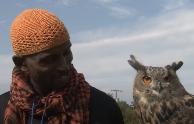 man and his owl