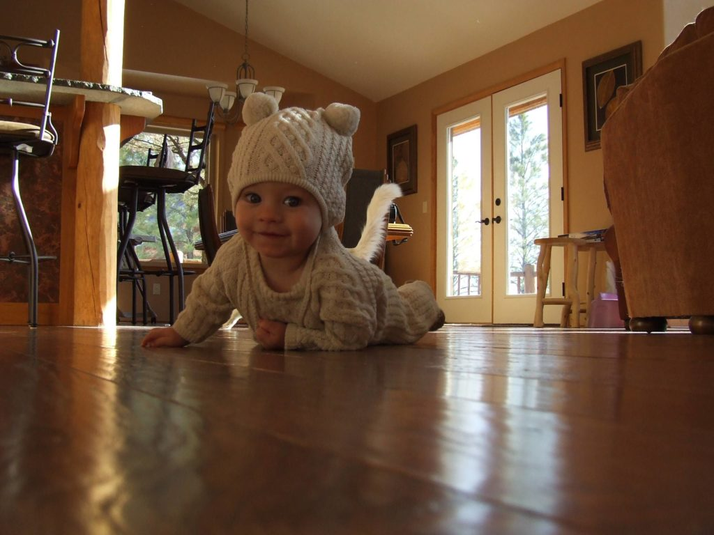 baby posing for photo with cat tail behind her