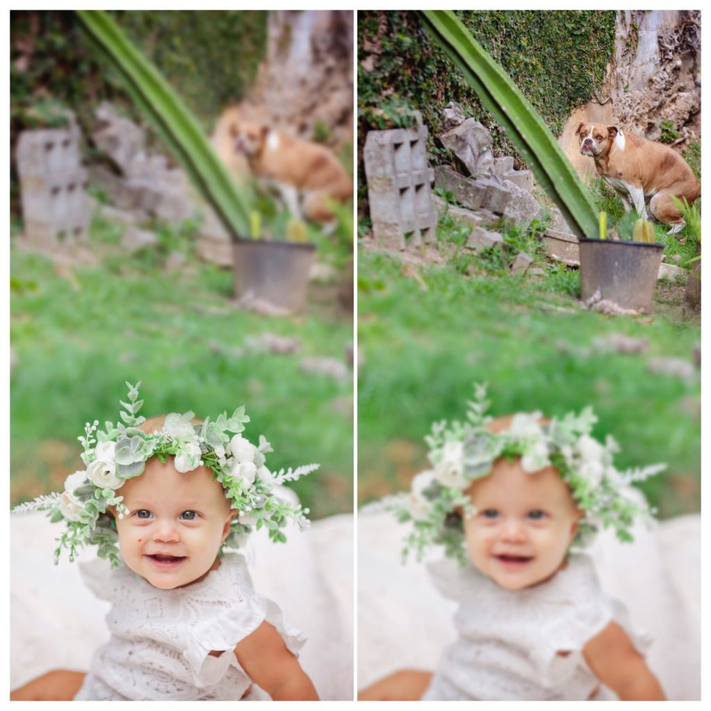 baby in flower crown with dog in background