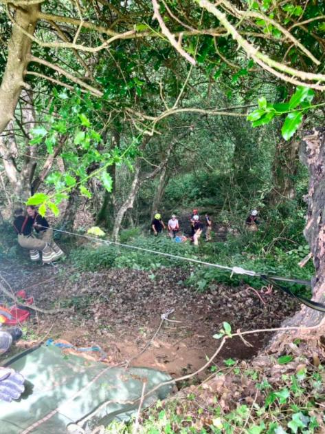 search and rescue party scattered over steep hill
