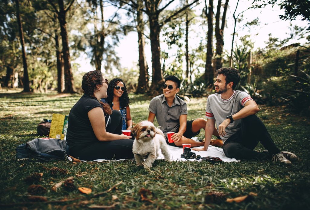 four adults having picnic with a dog
