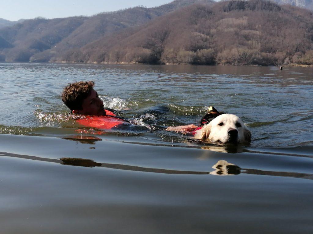 man holding onto lifeguard dog