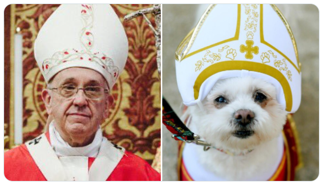 pope next to tiny dog dressed up as pope
