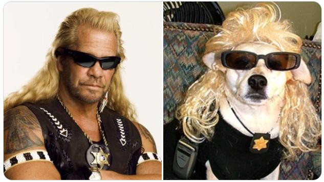 dog the bounty hunter next to dog wearing sunglasses