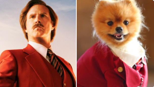 ron burgundy next to dog dressed in same red suit