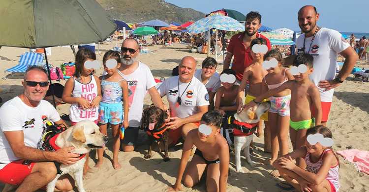 lifeguard dogs with group of people on beach
