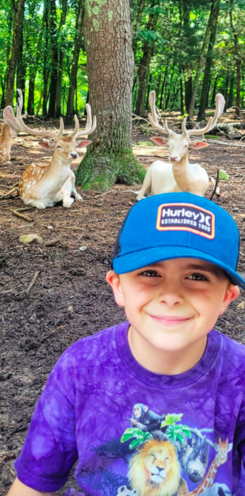 little boy smiling in front of animals