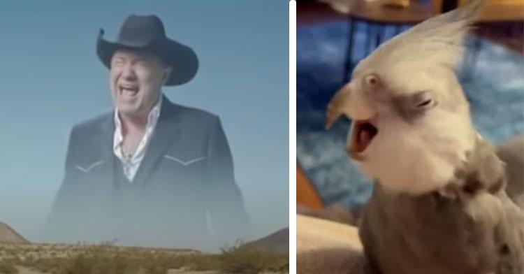 man singing in desert next to bird singing