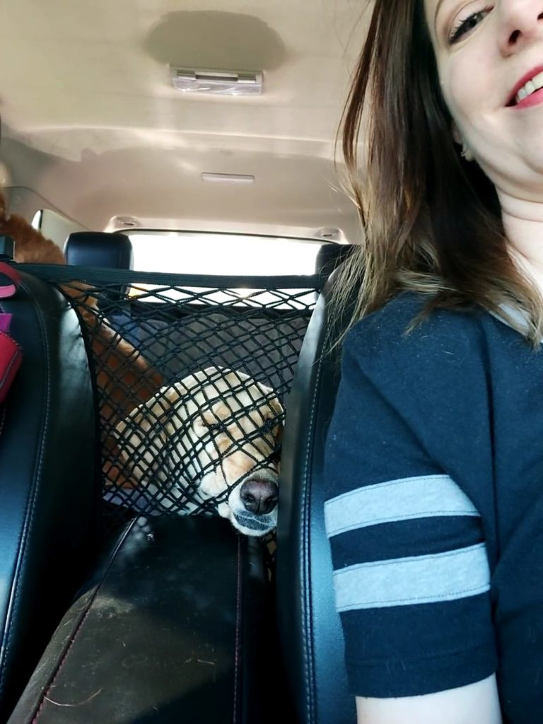 woman taking a selfie in a car with her dog who is squishing its face against a net in the backseat