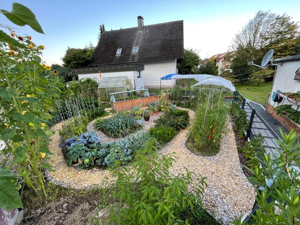 quaint backyard garden behind house.