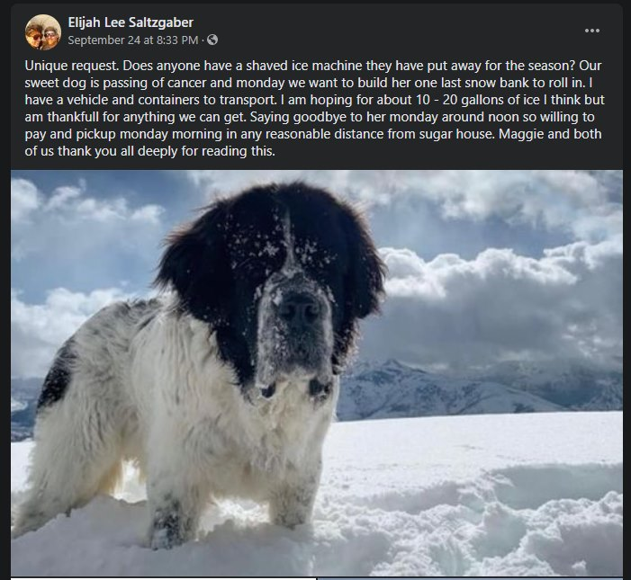 screenshot of a facebook post with a picture of a big dong in the snow