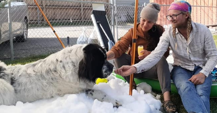 man and woman sitting near and petting a large dog who is on a giant pile of snow