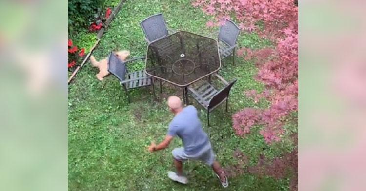 man chasing dog around backyard table